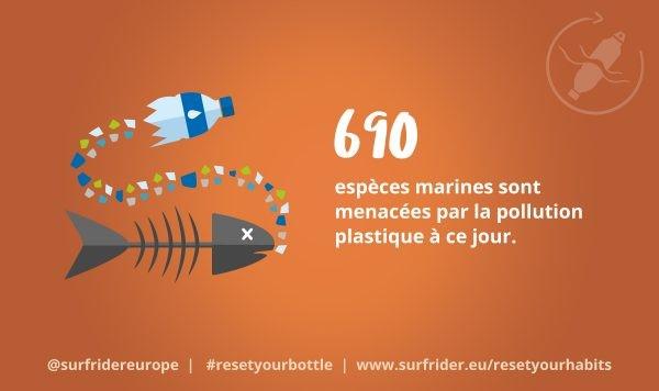 690 espèces marines sont menacées par la pollution à ce jour. @surfridereurope #resetyourbottle ww.surfrider.eu/resetyourhabits