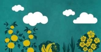 Vidéo d'animation sur le compostage