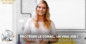 Tout (ou presque) sur le corail - Episode 3 - Protéger le corail, un vrai job !