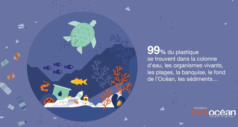 """Infographie : """"Plastique en mer, les solutions sont à terre"""" Fondation Tara Océan"""